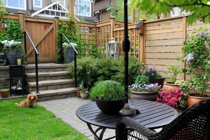 12 Simple Landscaping Ideas For Privacy In Your Yard Zacs Garden