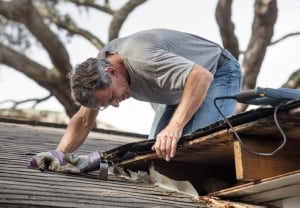 Man Examining his Shed roof repair