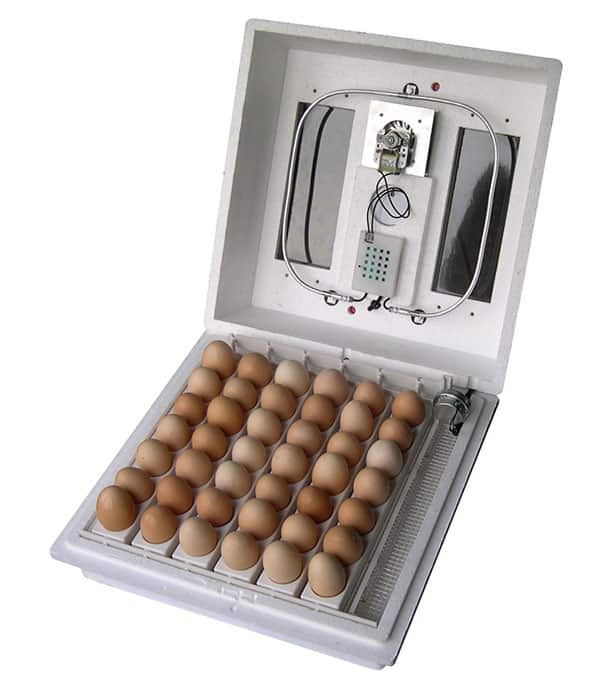 Farm innovators chicken egg incubator