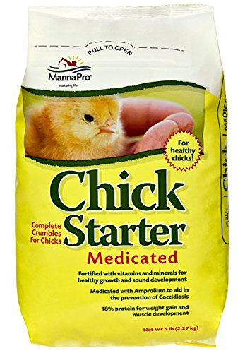 chick-starter-feed