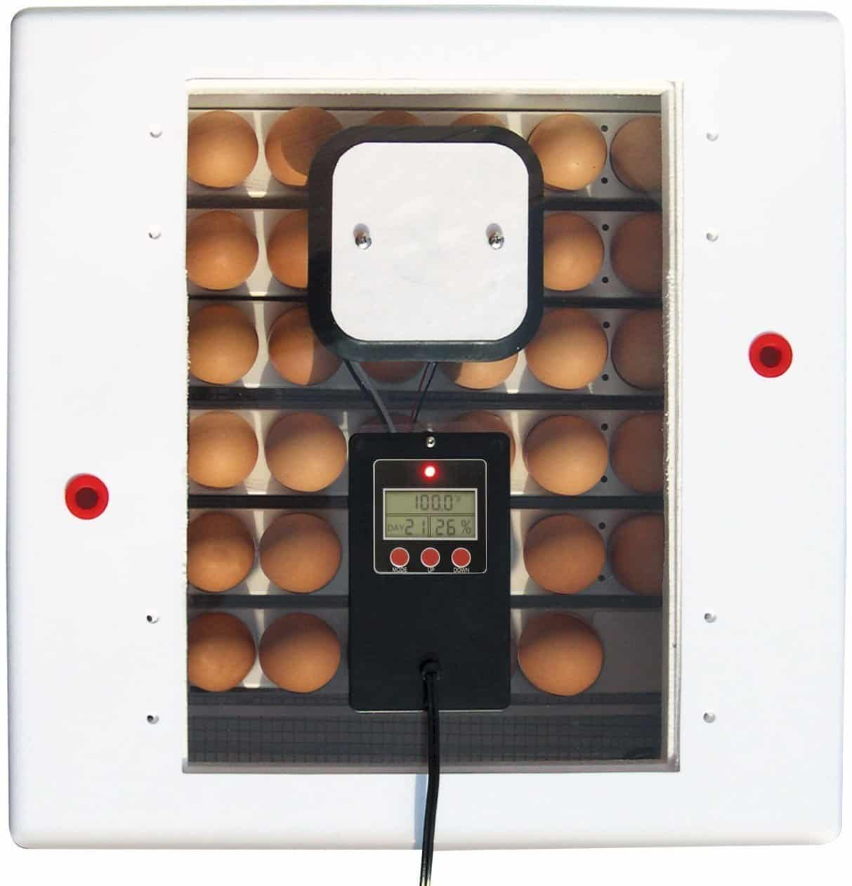 farm_innovators_egg_incubator_4250