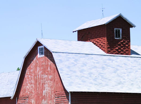 Barn and Shed Cupolas Reviewed - Should You Build or Buy?