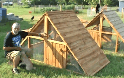 large_all_weather_chicken_coop