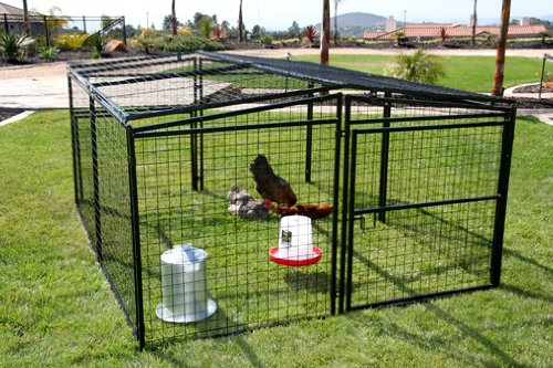 rugged_ranch_metal_chicken_coop