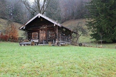 forest_log_house_shed-jpg