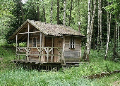 mini_house_shed-jpg