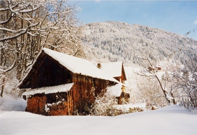 winter_firewood_shed