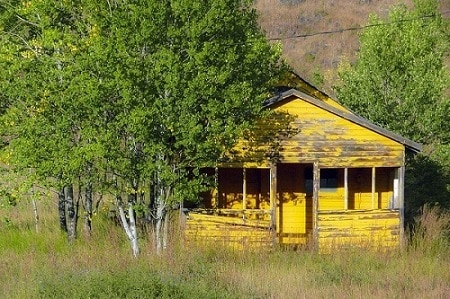 yellow_wood_shed