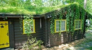 Goodman_GreenRoof