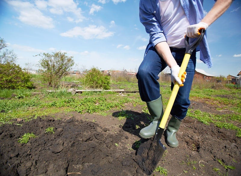 How to Start a Garden - Digging in the garden