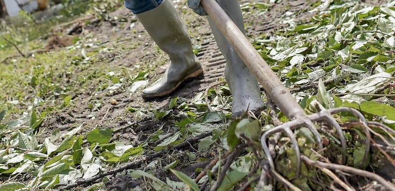 How to start a garden - rake soil
