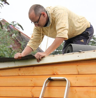 Shed Roof Archives - Zacs Garden