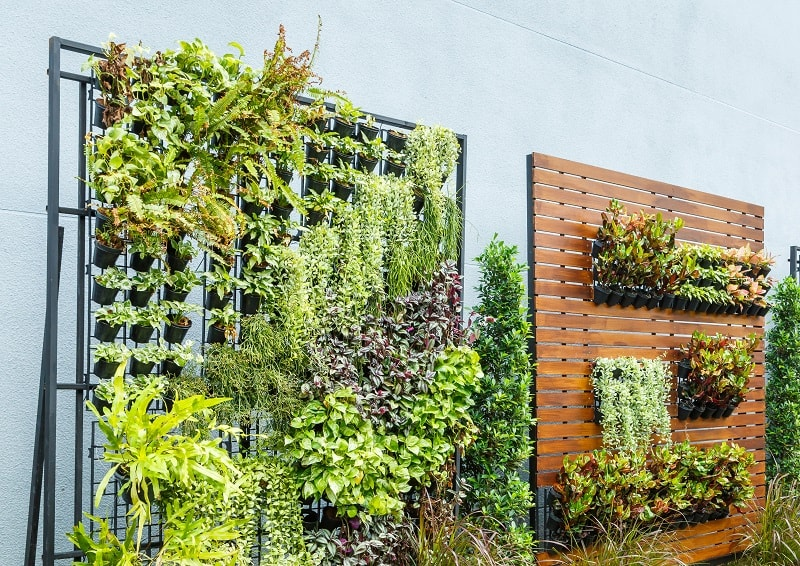 Vertical garden Ideas - Beautiful vertical garden in city around office building
