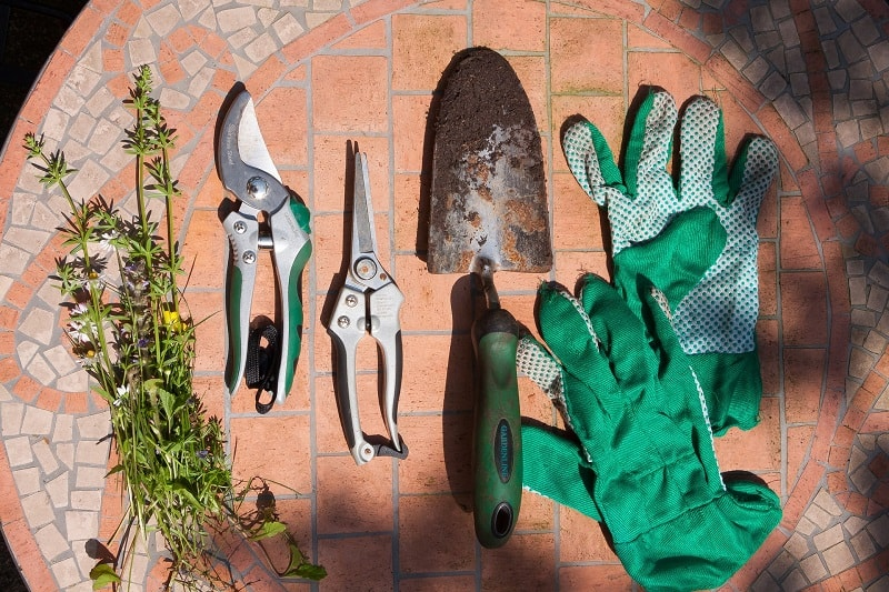 Best Garden Gloves - Gloves used for small gardening jobs. pruning etc.