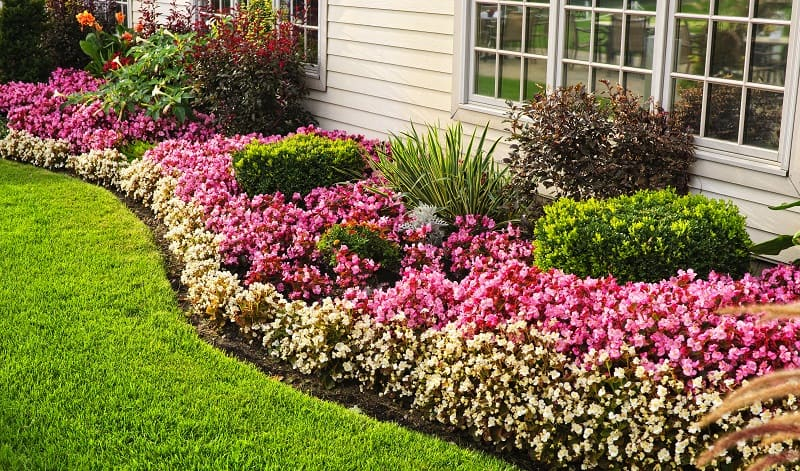 Curb appeal ideas - edge lawns