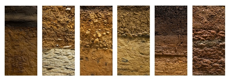 How to Prepare Soil for Planting - Cross section of common soils.