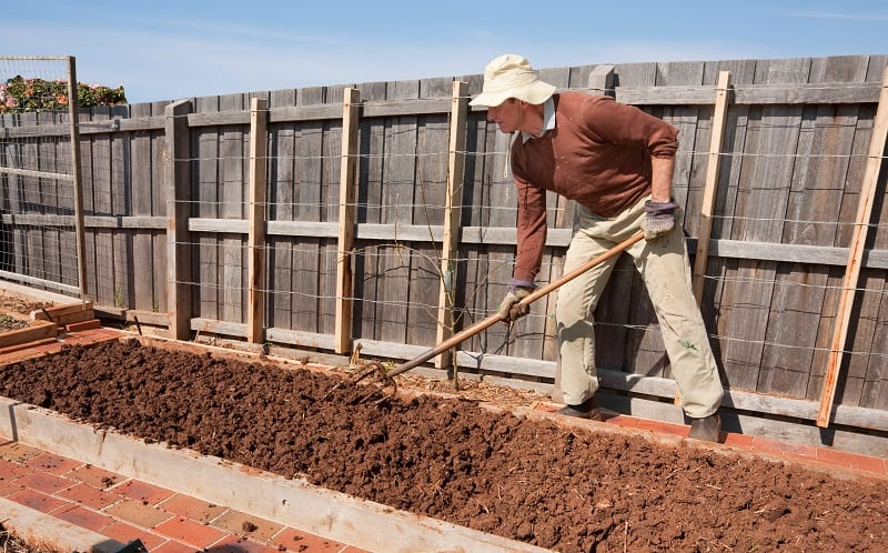 Preparation of Soil for Planting - Man hoing soil in raised garden bed