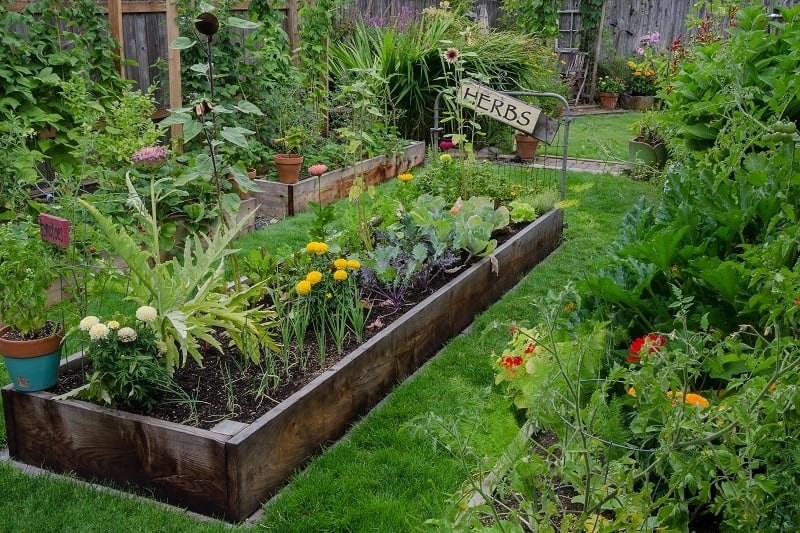 How to Start a Garden - Garden Bed Size