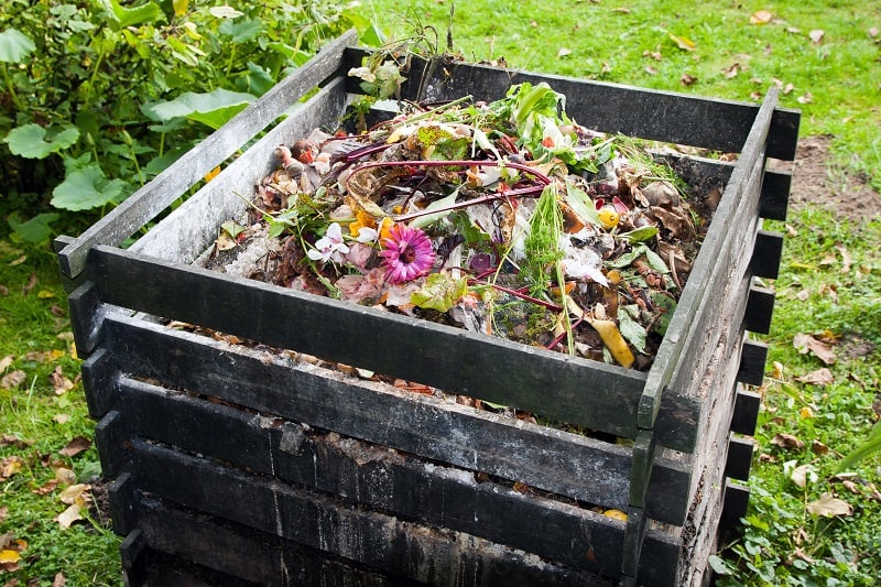 how to prepare soil - compost at back of yard