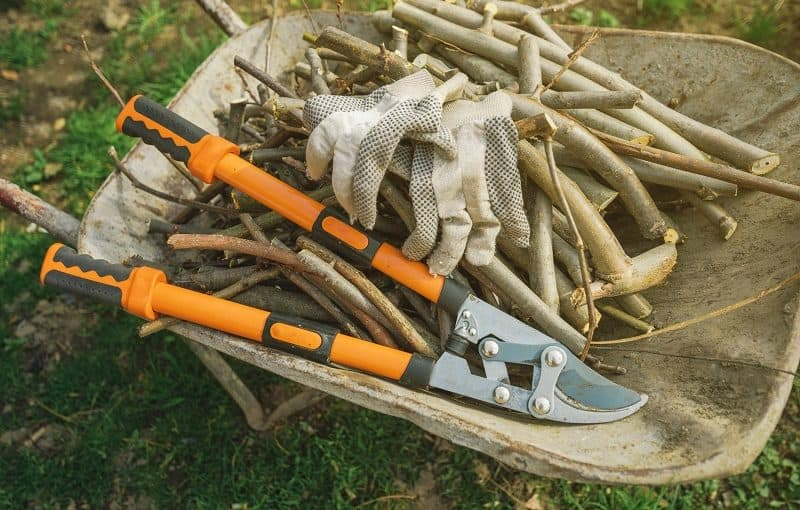 Best Loppers - A Pair of Loppers in a wheelbarrow with branches