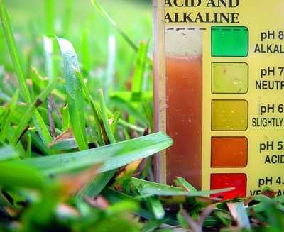 a close up of a soil ph tester kit during a test