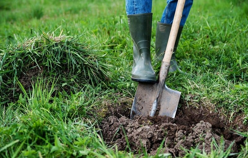 How to Level a Yard - Gardener removing lawn and digging a hole