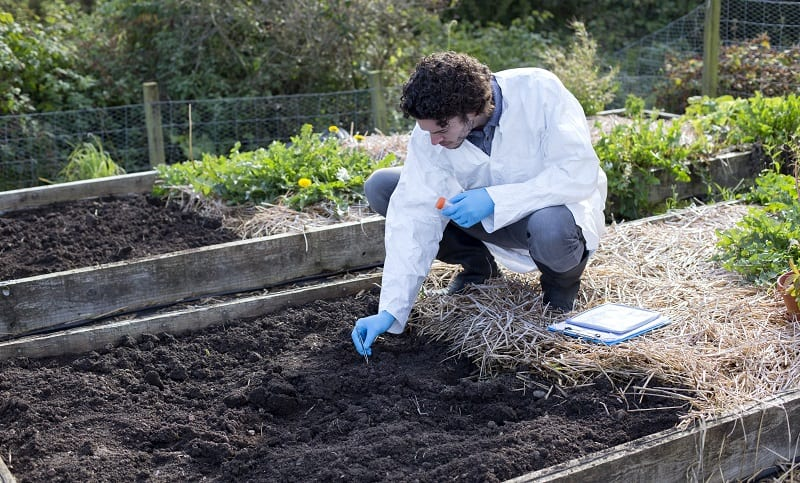 Using Soil Ph Tester Kits to Test Soil in Garden Bed