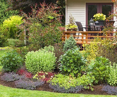 Landscaping Ideas Around Deck