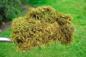 lawn_clippings_fertilizer