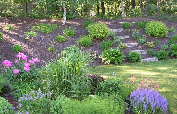 slope_yard_practical_landscaping_ideas