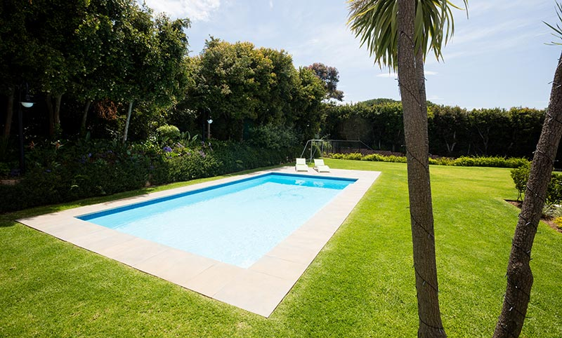 Landscaping ideas for pools - privacy heding