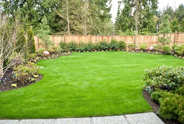 Best Large Backyard Ideas Landscaping