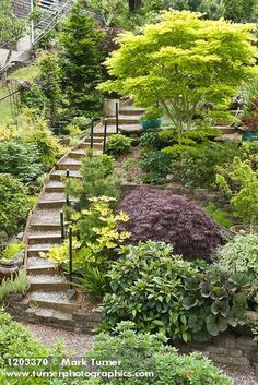 steep_landscaping_ideas