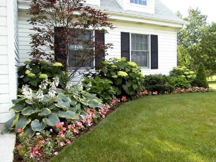 17 Landscaping Ideas for Ranch Style Homes - Zacs Garden on ranch house plans, ranch house landscape lighting, ranch house pools, ranch house flower beds, ranch house fencing, ranch house walkways, ranch house patios, ranch house bushes, ranch house terraces, ranch house landscaping, ranch house driveways,
