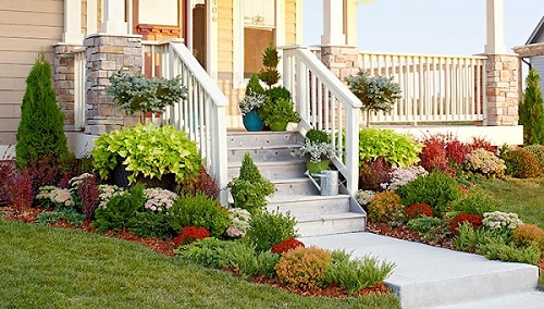 deck_landscaping_evergreen