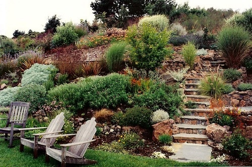 steep_landscaping_hillside_garden