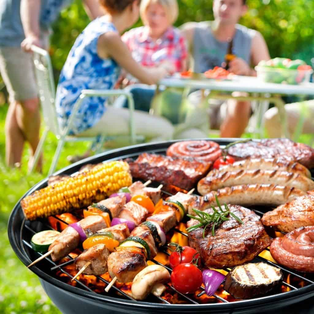 Best Ceramic Grill Reviews and Buyers Guide